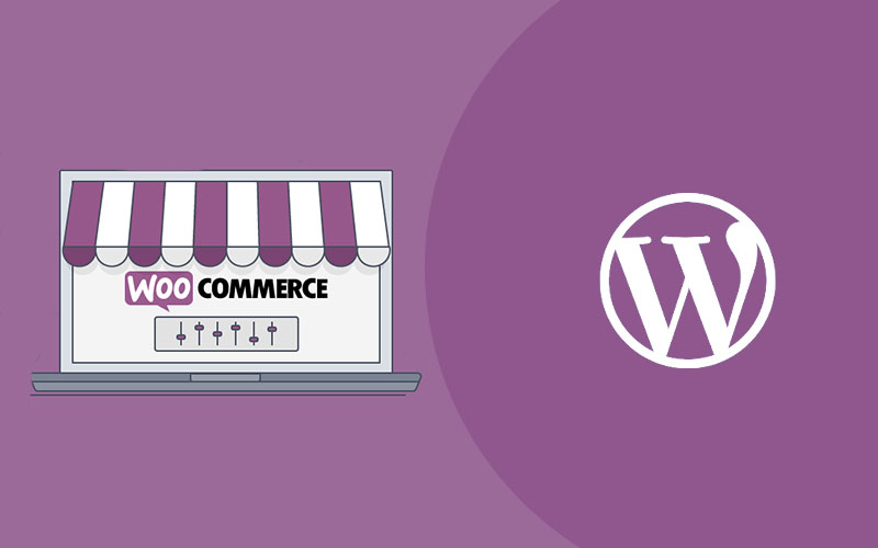 WordPress for e-commerce  website services in UK PERFECTIONGEEKS