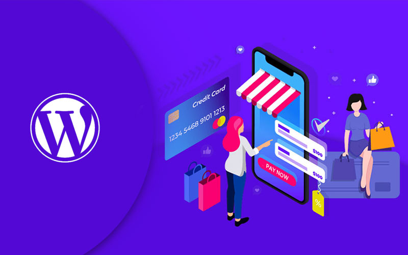 WordPress for e-commerce  website services in singapoore PERFECTIONGEEKS